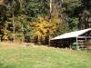 Christmas Tree Farm Virginia photo 1-1