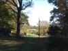 Christmas Tree Farm Virginia photo 2