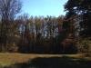 Acreage - Christmas Tree Farm Virginia