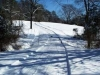 Spruce Rock - Christmas Tree Farm Virginia